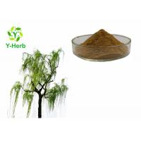 China Salix Alba Bark extract 10% 50% 98% Salicin Powder White Willow Bark Extract on sale