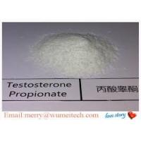 Pharmaceutical Testosterone Propionate Powder For Body Building Raw Steroid Powders Manufactures