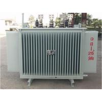 10KV High Voltage Three Phase Oil Immersed Power Transformer For Factory Manufactures