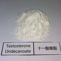 Pharmaceutical Testosterone Undecanoate Powder For Body Building Raw Steroid Powders Manufactures