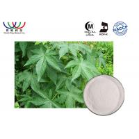 China 100 % Natural Sweetleaf Stevia Extract , Water Soluble Stevia Extract Powder on sale