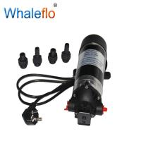 Whaleflo DP-160M high pressure 160psi 5.5LPM 230v ac electric pressure portable pump for RV Marine Manufactures