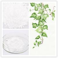 465-99-6 Hederagenin Natural Herbal Extracts Hederidi White Crystalline Powder