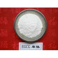 China 100% Natural Green Tea Extract Polyphenols and EGCG 98% on sale