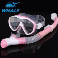 Adults Dive Mask Snorkel Set With Panoramic Diving Mask & Dry Top Snorkel Manufactures