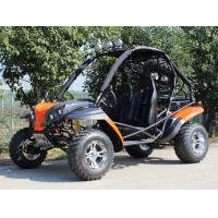 Forest Road / Riverbed 2 Seater Adult Go Kart Buggy With Front And Rear Disc Brake Manufactures