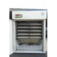 YZITE-9 Discount price HHD industrial used poultry chicken egg incubator for sale in India Manufactures