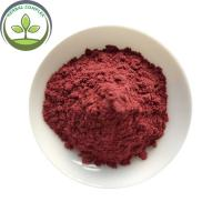 Best Selling Products Organic Acai Berry Powder In Bulk Stock Manufactures