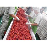 China 380V Berry Fruit Jam Processing Machinery 20T/H ISO9001 Certificate on sale