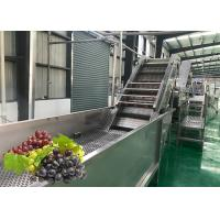 China Water Saving Fruit Juice Processing Equipment Fresh Grape Washing Machine Environment Friendly on sale