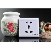 China 2.4G Wireless Socket Camera with Remote Control and Motion Detection CCD Lens on sale