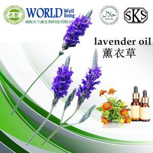 Lavender essential oil wholesale / best lavender oil price Manufactures