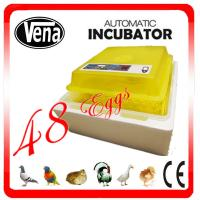 48 eggs mini incubator 12V or 110V or 220V full automatic mini chicken egg incubator for sale Manufactures