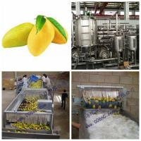 Mango Processing Line Paste Processing Line Plant in PET glass packing Manufactures