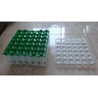 Plastic egg trays egg trays for sale egg tray manufacturers Manufactures