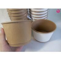500pcs per Carton 20oz Double Wall Paper Bowl Food Conatiner Takeaway in EU market Manufactures