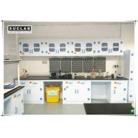 Corrosion Resistant Chemical Lab Furniture With PP Countertops And Shelves In Laboratory