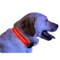 Quality Blue Vivid Illuminateing Safty Dog Collar for sale