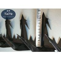 Large Sized Razor Wall Security Spikes Customized Burglar Proof Fence Spikes Manufactures