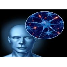 Buy cheap Noopept Nootropic Pramiracetam Brain Enhancing Drugs CAS 8497-62-1 from wholesalers