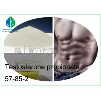 Anabolic Steroids cas 57-85-2 Testosterone Propionate Powder Test Prop for Bodybuilding Manufactures