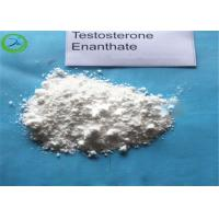 High Purity Factory Supply Testosterone Enanthate Bodybuilding Anabolic Steroids Chemical Raw Materials CAS 315-37-7 Manufactures