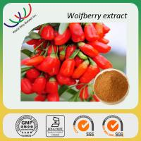 China manufacturer sales high quality 30% polysaccharides wolfberry extract Manufactures