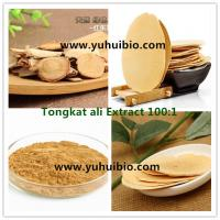 Quality Eurycoma longifolia jack Extract for sex improvement, Eurycoma longifolia jack powder for Sexual dysfunction for sale