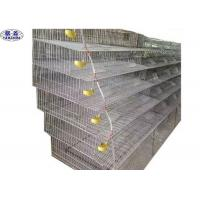 Welded Mesh Quail Laying Cage / Quail Poultry Layer Cages CE Certification Manufactures