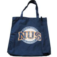 Canvas Tote Shopper Bags 10Oz , Large Travel Tote Bags With Pockets Manufactures