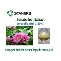 Corosolic Acid Weight Losing Raw Materials , Banaba Leaf Extract Powder HPLC Test Manufactures