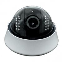 Outdoor Real-time HD Dome IP Camera PoE , IR-15M With IR-cut , Vandal Proof Manufactures