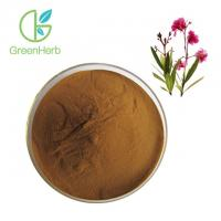 Pharmaceutical Grade Herbal Plant Extract Pure Natural Oleander Extract By TLC Manufactures
