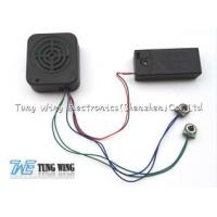 Square Recording Sound Module With An Speaker Cell Box And Two Push Buttons Manufactures