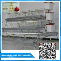 China 3 tiers 96 birds capacity poultry chicken layer cage on sale