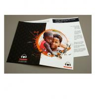 China promotion leaflet printing,top quality flyer printing,flyer printing company in China,online flyer printing on sale