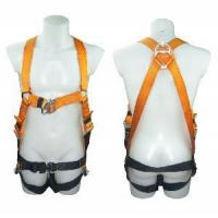Safety Harness - 2 D Ring, Model#DHQS066 Manufactures