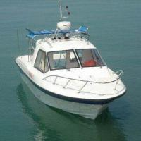 Fishing Boat with Stainless Steel Handrail and 1.19m Depth, CE Approval Manufactures