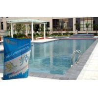 Swimming Pool Waterproofing Slurry With Concrete Polymer Safety For Sale Of Ceramictileadhesive
