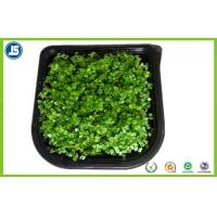 Plastic Seed Tray Blister Packaging Tray With Black For Plants Grown Manufactures