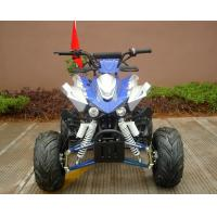 Front / Rear Disc Brake Four Wheelers For Adults , 110cc Four Wheeler Electric Start Manufactures