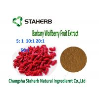 Natural Barbary Wolfberry Goji Berry Extract4/1 10/1 Ratio Brown Powder Anti - Tumor Manufactures