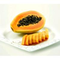 China papaya seed powder free sample -- IlexChaenomeles lagenaria(Lolsel.) Koidz. on sale