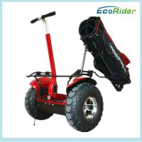 Self Balancing Electric Golf Scooter Segway Outdoor Dual Wheel Manufactures