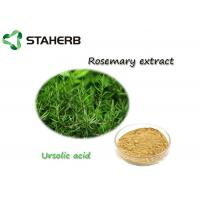 Quality Antioxdent Rosemary Leaf Extract Ursolic Acid Powder For Cusmetic Product for sale