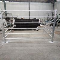 Cattle Panels 50mm * 50mm RHS * 1.6mm thickness Manufactures