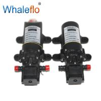 Whaleflo 12V FLO-2203 70PSI 2.6LPM  pressure sprayer pump/ electric battery powered water pump Manufactures