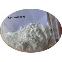 L - Triiodothyronine T3 Pharmaceutical Intermediate Powder For Muscle Building / Weight Loss Manufactures