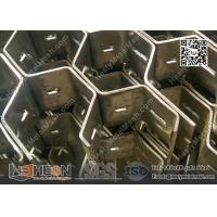310SS Stainless Steel 2X25X50mm hexagonal Mesh China Factory / Supplier Manufactures