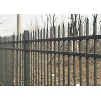 Quality Hercules Steel Fence1.8m X 2.4m Ornamental Welded Metal Fence Panels with Black Color PVC coated for sale